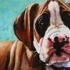 Pet Portrait: Olive as a Puppy